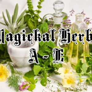 magical herbs a thru e