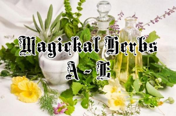 magical herbs a thru e