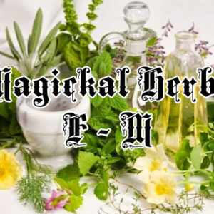 Magical Herbs F - M