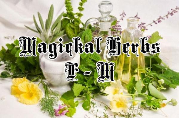 Magical Herbs F - M