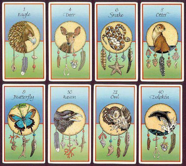 Medicine Cards Sample
